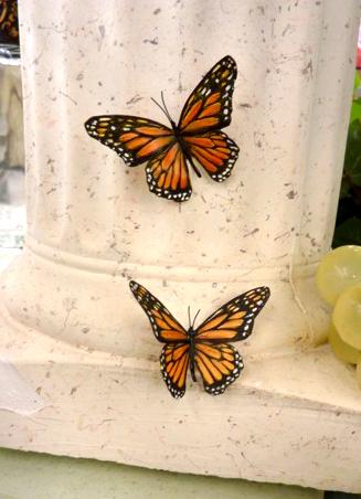 realistic-butterfly-schneider-1